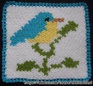 Kuş Lif Modeli