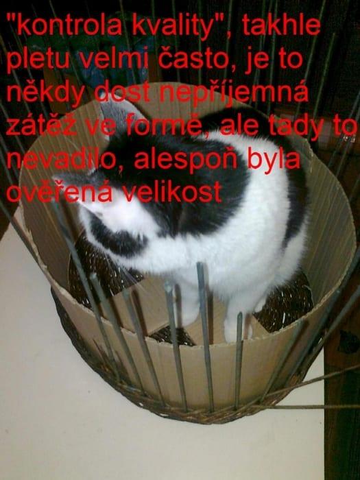 Gazeteden Kedi Evi Yapımı 10
