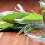 Bitkisel Kış Çayları ile Doğal Antibiyotikler