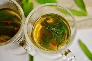 Bitkisel Kış Çayları ile Doğal Antibiyotikler 1