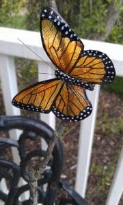 Videolu, Plastik Şişeden Kelebek Yapımı 7