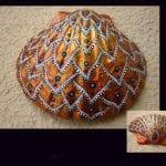 Deniz Kabuğu Boyama Örnekleri 9