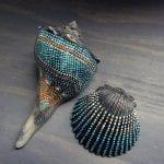 Deniz Kabuğu Boyama Örnekleri 11