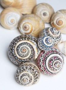 Deniz Kabuğu Boyama Örnekleri