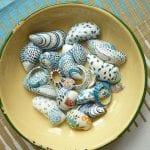 Deniz Kabuğu Boyama Örnekleri 20