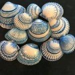 Deniz Kabuğu Boyama Örnekleri 59