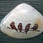 Deniz Kabuğu Boyama Örnekleri 70