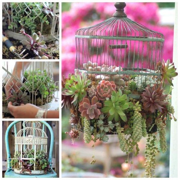 Pratik Bahçe Tasarımları ve Bahçe Dekorasyon Örnekleri 1