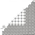 Şal Şemaları 186