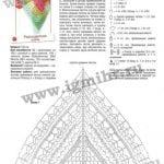 Şal Şemaları 245