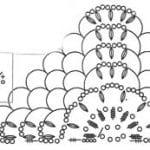 Şal Şemaları 55