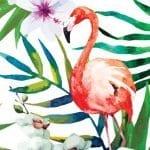 Dekupaj için Çiçek Resimleri 65