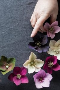 Grapon Kağıdı ile Çiçek Yapımı 20