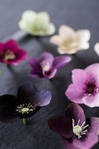 Grapon Kağıdı ile Çiçek Yapımı 21