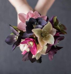 Grapon Kağıdı ile Çiçek Yapımı 22