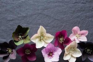 Grapon Kağıdı ile Çiçek Yapımı 23