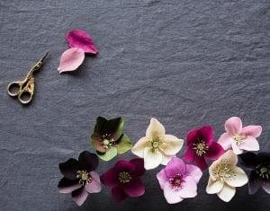 Grapon Kağıdı ile Çiçek Yapımı 2