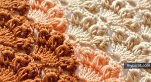 Fıstıklı Deniz Kabuğu Örgü Modeli Yapımı 12