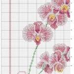 Kanaviçe Orkide Şablonları 9