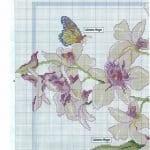 Kanaviçe Orkide Şablonları 11