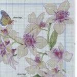 Kanaviçe Orkide Şablonları 13