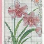 Kanaviçe Orkide Şablonları 14