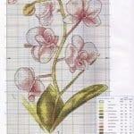 Kanaviçe Orkide Şablonları 16