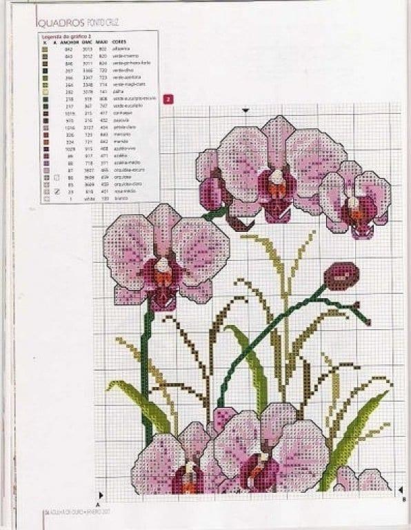 Вышивка схема орхидея 46