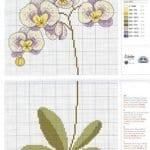 Kanaviçe Orkide Şablonları 27
