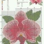 Kanaviçe Orkide Şablonları 2
