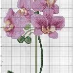 Kanaviçe Orkide Şablonları 29