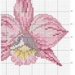 Kanaviçe Orkide Şablonları 31