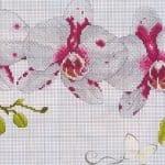 Kanaviçe Orkide Şablonları 32