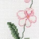 Kanaviçe Orkide Şablonları 40