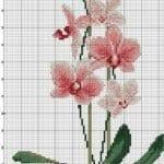 Kanaviçe Orkide Şablonları 41