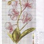 Kanaviçe Orkide Şablonları 44