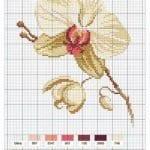 Kanaviçe Orkide Şablonları 45