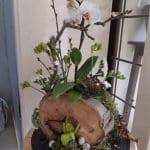 Ağaç Kütüğünde Teraryum 45