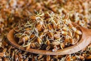 Buğday Çimi Faydaları 1