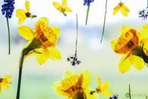 Çiçek Çerçevesi Yapımı 13