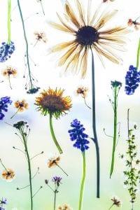 Çiçek Çerçevesi Yapımı 14