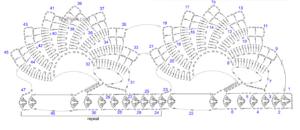 Deniz Kabuğu Havlu Kenarı Yapımı Anlatımlı