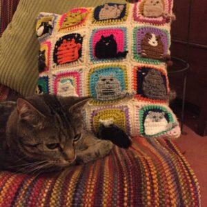 Kedi Motifli Yastık Nasıl Örülür? 3
