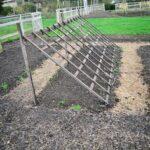 Organik Bahçecilik Fikirleri 1