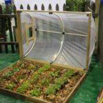 Organik Bahçecilik Fikirleri 28