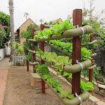 Organik Bahçecilik Fikirleri 2