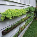 Organik Bahçecilik Fikirleri 29