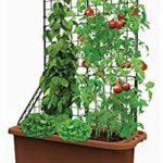 Organik Bahçecilik Fikirleri 31