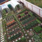 Organik Bahçecilik Fikirleri 32