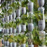Organik Bahçecilik Fikirleri 34